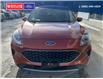 2020 Ford Escape SE (Stk: 4256) in Vanderhoof - Image 6 of 19