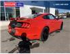 2021 Ford Mustang GT Premium (Stk: 5035) in Vanderhoof - Image 3 of 17
