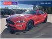 2021 Ford Mustang GT Premium (Stk: 5035) in Vanderhoof - Image 6 of 17