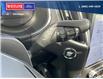 2021 Ford Edge Titanium (Stk: 5042) in Vanderhoof - Image 17 of 22