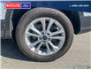 2017 Ford Escape SE (Stk: 9906) in Quesnel - Image 6 of 24