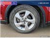 2018 Toyota C-HR XLE (Stk: 2166AL) in Dawson Creek - Image 6 of 25