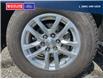 2019 Chevrolet Silverado 1500 LT (Stk: 21152A) in Quesnel - Image 6 of 24