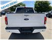 2019 Ford F-150 Lariat (Stk: 19353) in Perth - Image 4 of 14