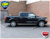 2019 Ford F-150 Limited (Stk: LP1165) in Waterloo - Image 5 of 29