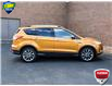 2016 Ford Escape SE (Stk: ZC804AX) in Waterloo - Image 5 of 24