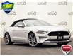 2020 Ford Mustang GT Premium (Stk: LP1310) in Waterloo - Image 1 of 23