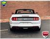 2020 Ford Mustang GT Premium (Stk: LP1310) in Waterloo - Image 5 of 23