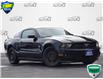 2011 Ford Mustang V6 (Stk: AB925AA) in Waterloo - Image 1 of 15