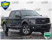 2013 Ford F-150 FX4 (Stk: LP0975A) in Waterloo - Image 1 of 7