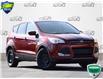 2016 Ford Escape SE (Stk: ZC487B) in Waterloo - Image 1 of 17