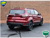 2017 Ford Escape SE (Stk: LP1088B) in Waterloo - Image 6 of 16