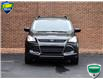 2015 Ford Escape SE (Stk: P1138) in Waterloo - Image 4 of 20