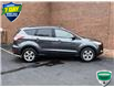 2015 Ford Escape SE (Stk: P1138) in Waterloo - Image 5 of 20