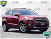 2017 Ford Escape SE (Stk: BSC816AX) in Waterloo - Image 1 of 28