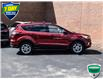 2017 Ford Escape SE (Stk: BSC816AX) in Waterloo - Image 5 of 28