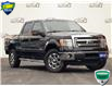 2014 Ford F-150 XLT (Stk: FC584AXX) in Waterloo - Image 1 of 29