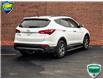 2013 Hyundai Santa Fe Sport 2.4 Premium (Stk: XD157A) in Waterloo - Image 5 of 28