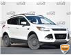 2013 Ford Escape SEL (Stk: P0922) in Waterloo - Image 1 of 5