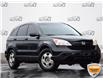 2009 Honda CR-V LX (Stk: P0362B) in Waterloo - Image 1 of 13