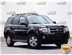 2010 Ford Escape XLT Manual (Stk: RC011A) in Waterloo - Image 1 of 15