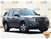 2011 Ford Escape XLT Automatic (Stk: ZC106AZ) in Waterloo - Image 1 of 20