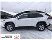 2019 Toyota RAV4 LE (Stk: 9255A) in Calgary - Image 5 of 22