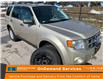 2010 Ford Escape XLT Automatic (Stk: 3130B1) in Brampton - Image 1 of 17