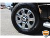 2013 Ford F-150 XLT (Stk: A0H1244Z) in Hamilton - Image 9 of 19