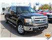2013 Ford F-150 XLT (Stk: A0H1244Z) in Hamilton - Image 2 of 19