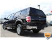2013 Ford F-150 XLT (Stk: A0H1244Z) in Hamilton - Image 8 of 19
