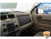 2011 Ford Escape XLT (Stk: B210316XZ) in Hamilton - Image 9 of 17
