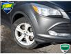 2015 Ford Escape SE (Stk: 7348A) in Welland - Image 7 of 20