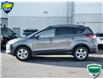 2015 Ford Escape SE (Stk: 7348A) in Welland - Image 5 of 20