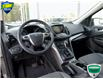 2015 Ford Escape SE (Stk: 7348A) in Welland - Image 11 of 20