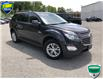 2016 Chevrolet Equinox LT (Stk: 7522A) in Welland - Image 3 of 18