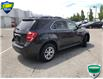 2016 Chevrolet Equinox LT (Stk: 7522A) in Welland - Image 4 of 18