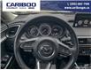 2020 Mazda CX-9 GS-L (Stk: 9773) in Williams Lake - Image 12 of 24
