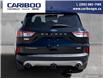 2020 Ford Escape Titanium (Stk: 9780) in Williams Lake - Image 4 of 23