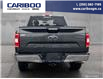 2020 Ford F-150 XLT (Stk: 9800) in Williams Lake - Image 5 of 22