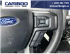 2020 Ford F-150 XLT (Stk: 9800) in Williams Lake - Image 15 of 22