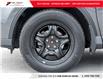 2017 Toyota RAV4 LE (Stk: N17736A) in Toronto - Image 6 of 21