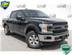 2019 Ford F-150 XLT (Stk: 35075AU) in Barrie - Image 1 of 24