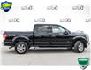 2016 Ford F-150 XLT (Stk: 35099AU) in Barrie - Image 4 of 27
