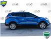 2017 Ford Escape SE (Stk: 44621FAU) in Innisfil - Image 5 of 29