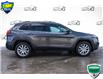2014 Jeep Cherokee Limited (Stk: 44648AU) in Innisfil - Image 5 of 29