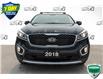 2018 Kia Sorento 3.3L EX (Stk: 44558AU) in Innisfil - Image 4 of 25