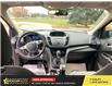 2015 Ford Escape  (Stk: C47970) in Guelph - Image 13 of 13