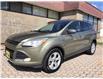 2013 Ford Escape SE (Stk: FB47787) in Hamilton - Image 1 of 17