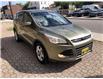 2013 Ford Escape SE (Stk: FB47787) in Hamilton - Image 2 of 17